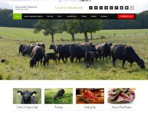 Angus East Organcis Organic Grass Fed Angus Beef